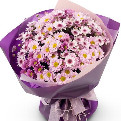 소국 꽃다발 (연보라빛)