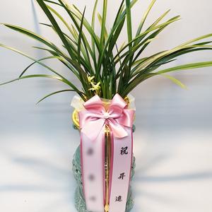 철골소심 최고급형 투각분 꽃대포함